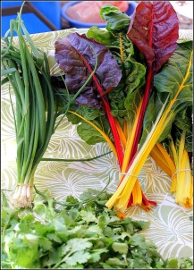 Swiss Chard and Cilantro, Courtesy Dena T Bray Ⓒ